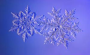 snowflake-iii